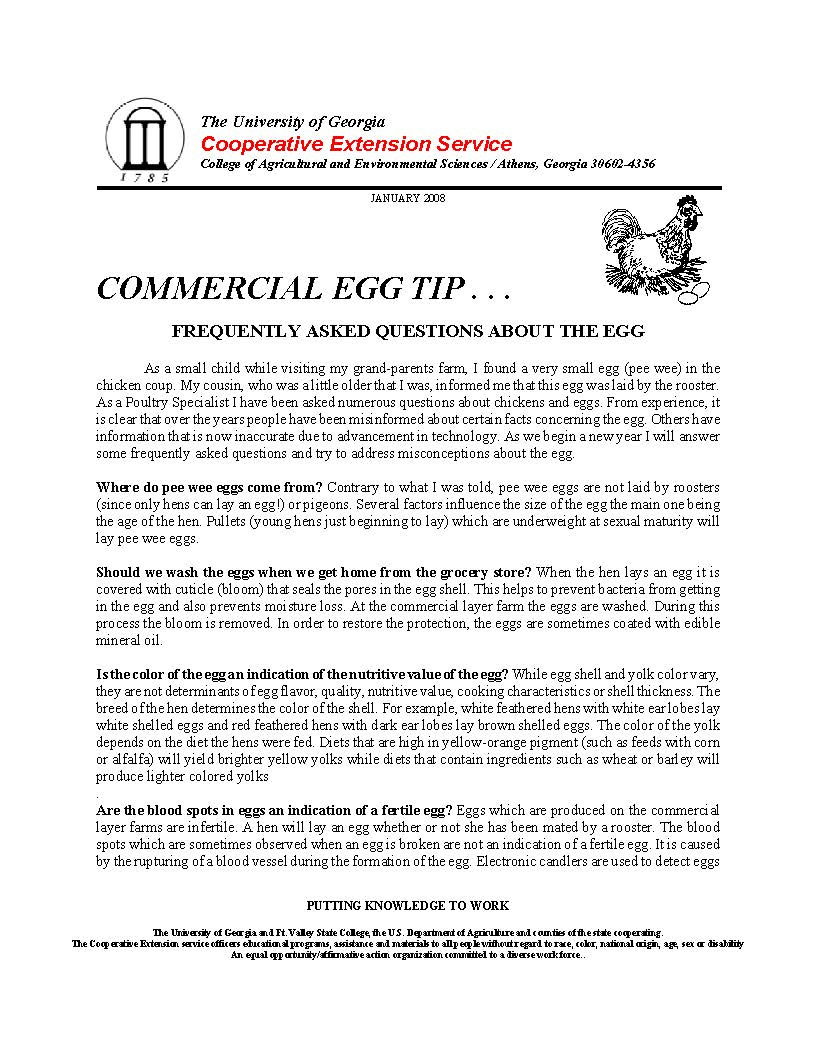 2008 1 Egg_Page_1.jpg