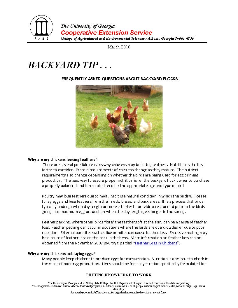 2010 4 Backyard FAQ_Page_1.jpg