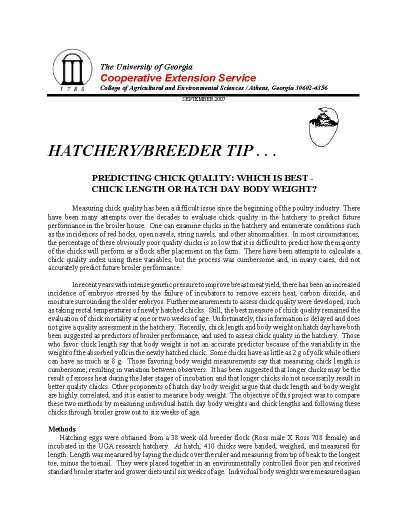 2007 16 Hatchbreed-chickquality_Page_1.jpg