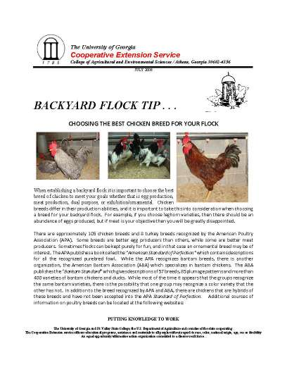 2008 10 Back-breed_Page_1.jpg