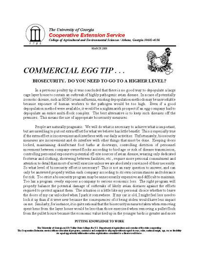 2008 3 Egg_Page_1.jpg