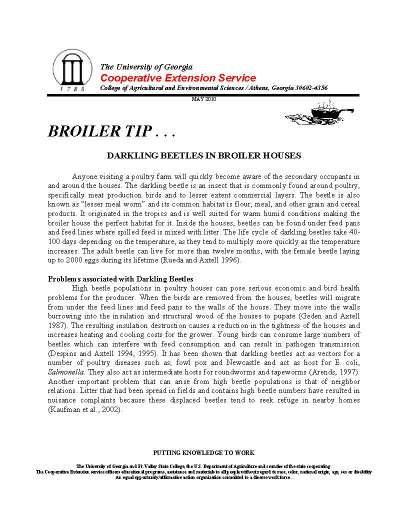 2010 7 Broiler Beetles_Page_1.jpg